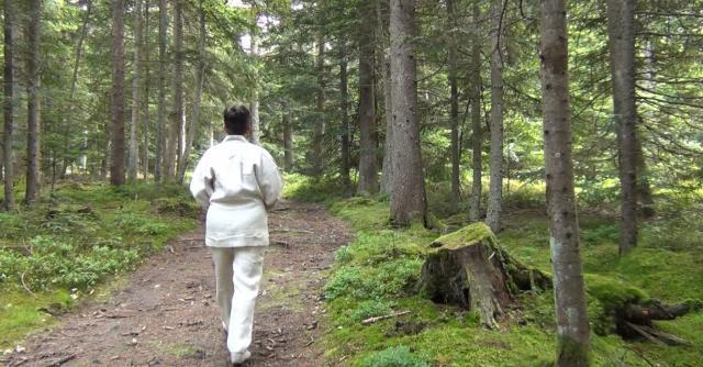 """Séjour """"Bains de forêt"""""""