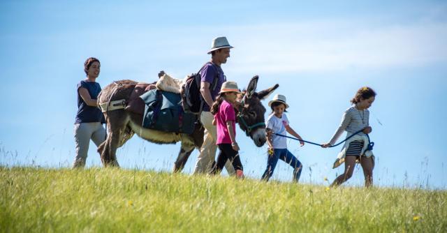 Les Gorges de l'Ardèche en famille avec un âne