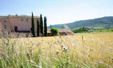 La Musardière - S'émerveiller par le terroir et l'histoire d'Alba