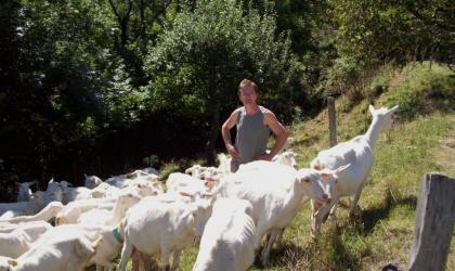 - Mr Noyer et ses chèvres