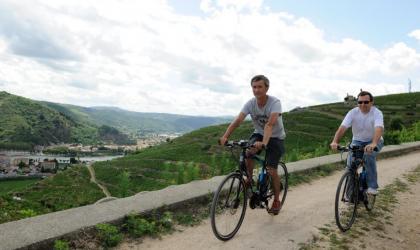 - Vélo électrique dansles vignes