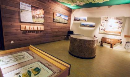 Elyas SAENS - Musée