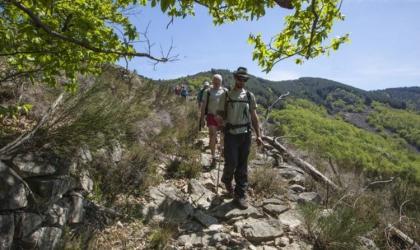 - Chemin Faisant - Les Monts d'Ardèche en liberté