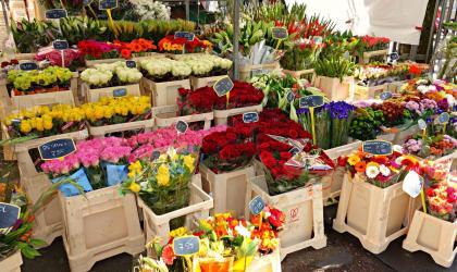 - marché aux fleurs - Saint Victor