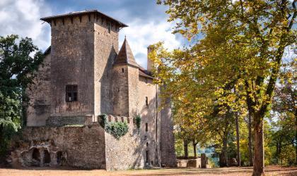 Château de Charmes sur l'Herbasse - Château de Charmes sur l'Herbasse