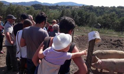 Fromagerie du Roule_Facebook - Méga dimanche à la ferme_Colombier-le-Vieux
