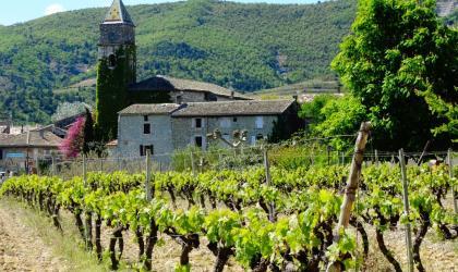 Amandine Maréchal - Vue du village