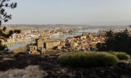 M. Roux - Visite le vrai du faux_ Tournon sur Rhône