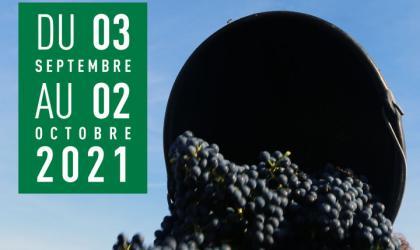 2000 Vins d'Ardèche - Vendangeur d'un jour