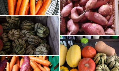 Charmes en légumes - Légumes 3