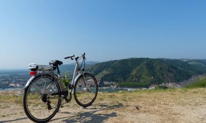 - Vélo électrique dans les vignes