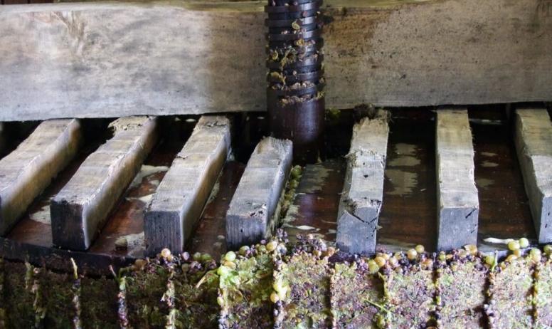 cave Desbos - Pressoir mécanique