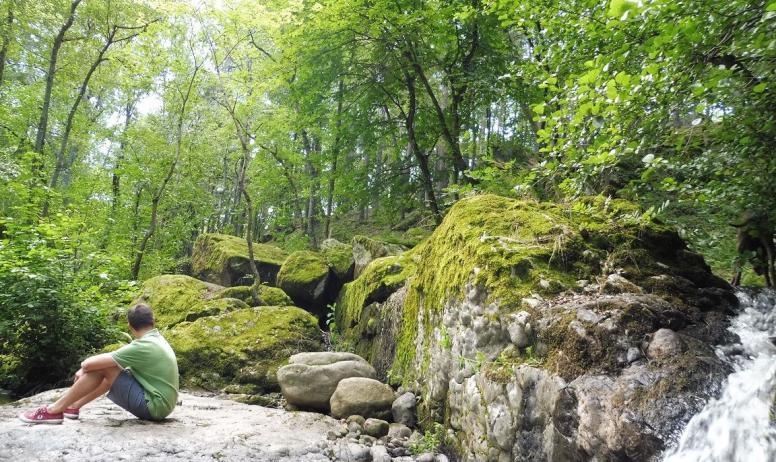 © Les Blaches - Le ruisseau Le Rantoine qui s'écoule en bas du jardin