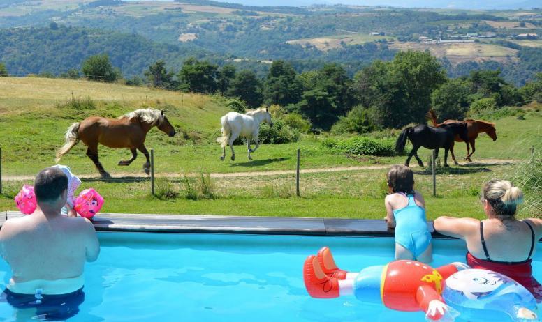 Gîtes de France - espace piscine à la Bonnefontaine
