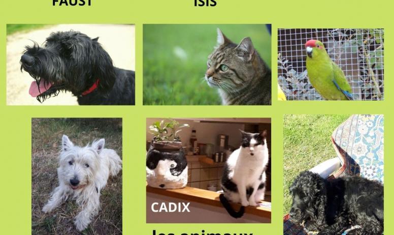 Gîtes de France - Bienvenue aux animaux
