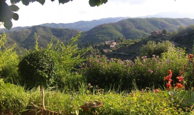 Gîtes de France - la vue du jardin