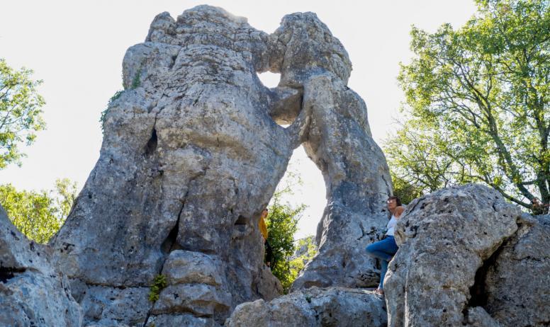 ot Cévennes d'Ardèche - L'ours et le lion