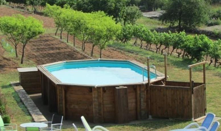 Gîtes de France - La piscine dans son environnement de pêchers et vignes