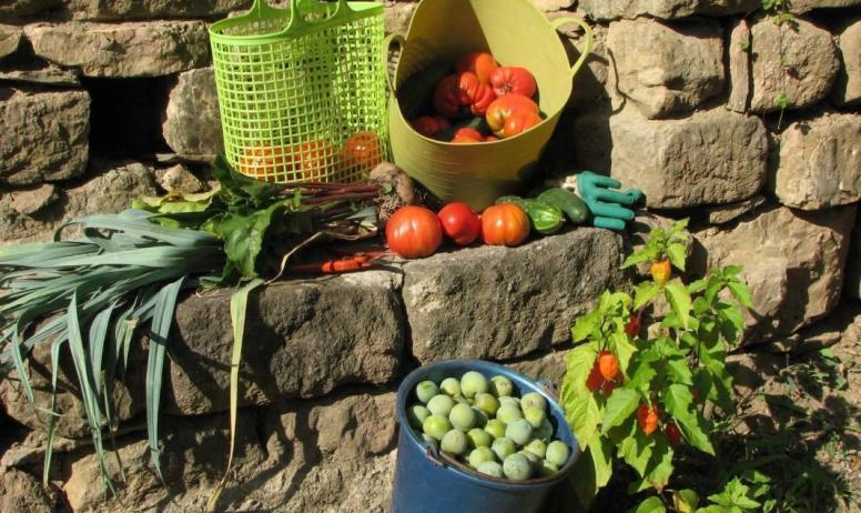 Gîtes de France - légumes de notre jardin bio