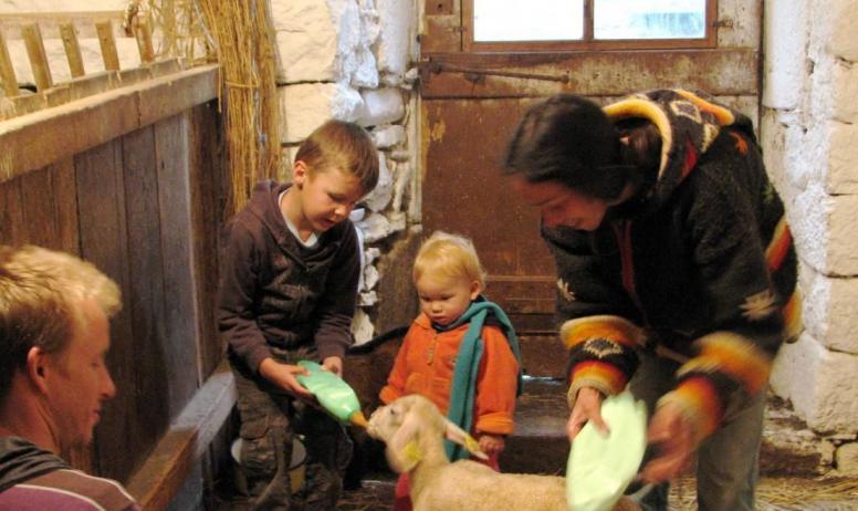 Gîtes de France - petit agneau et son biberon
