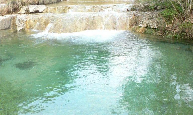 - piscine naturelle