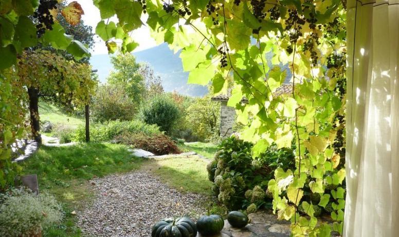 Gîtes de France - début d' automne...le raisin est mûr!