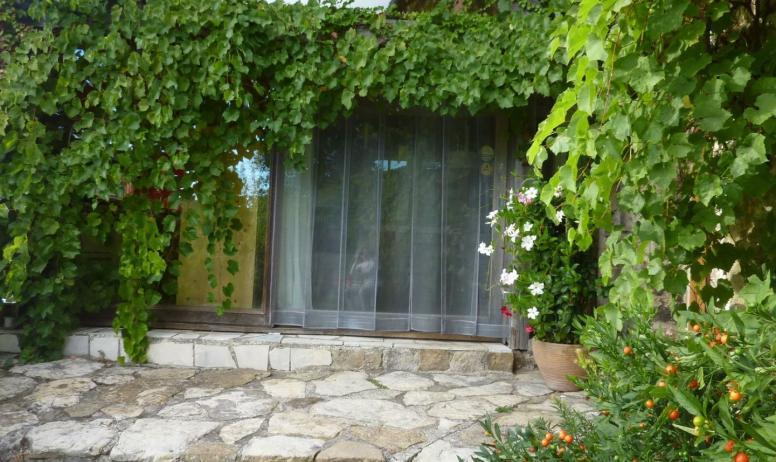 Gîtes de France - vignes et ampelopsis servent de climatisation naturelle