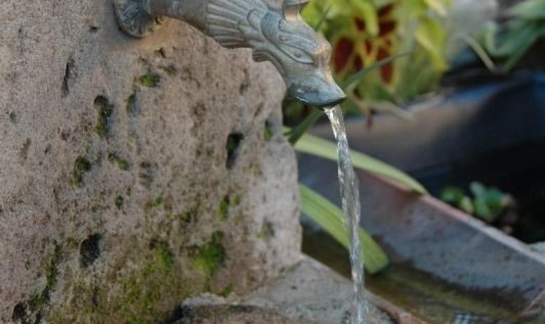 Gîtes de France - La fontaine