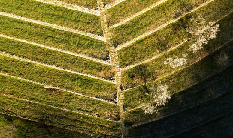 ©S.BUGNON - Saint-Pierre-de-Colombier - Terrasses d'Aulureyres ©S.BUGNON