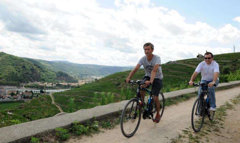 Intersport - Vélo électrique dansles vignes