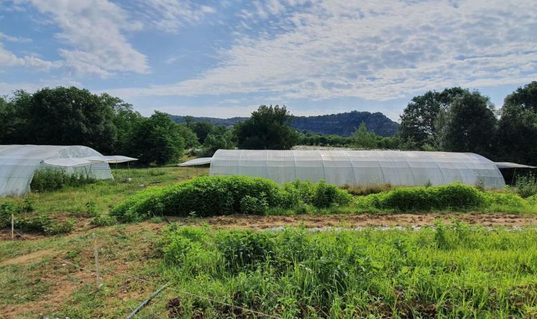 Sauvant Joël - fruits et légumes bio : Que Faire en Ardèche Les ...