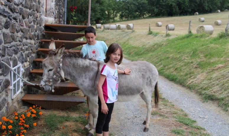 Ou bien une petite balade à dos d'ânes ?