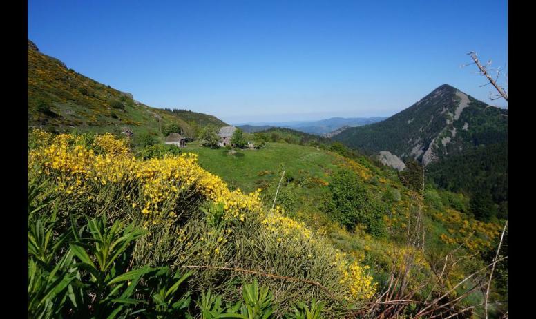 Gaetan Riou - paysage