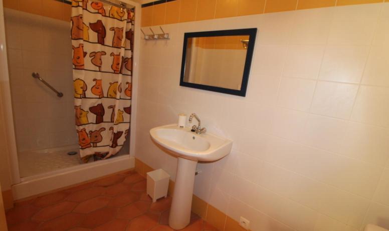 Gîtes de France - la salle de douche avec wc