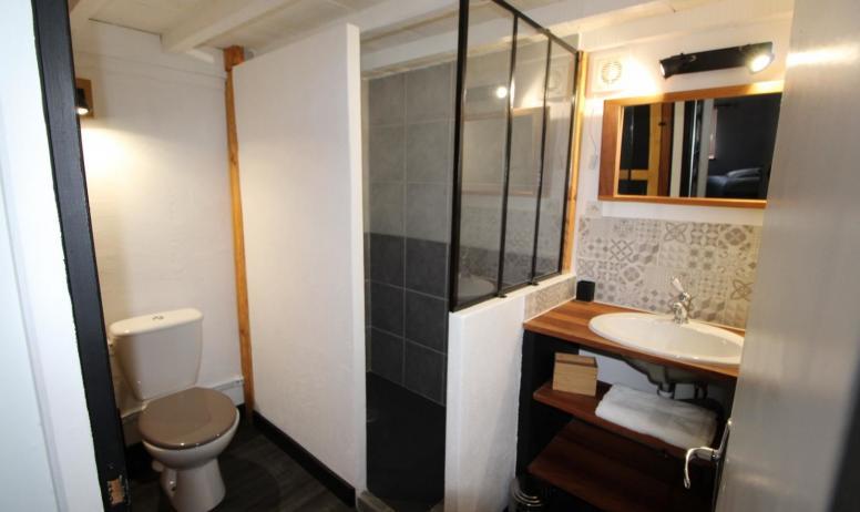 Gîtes de France - Salle de douche avec WC
