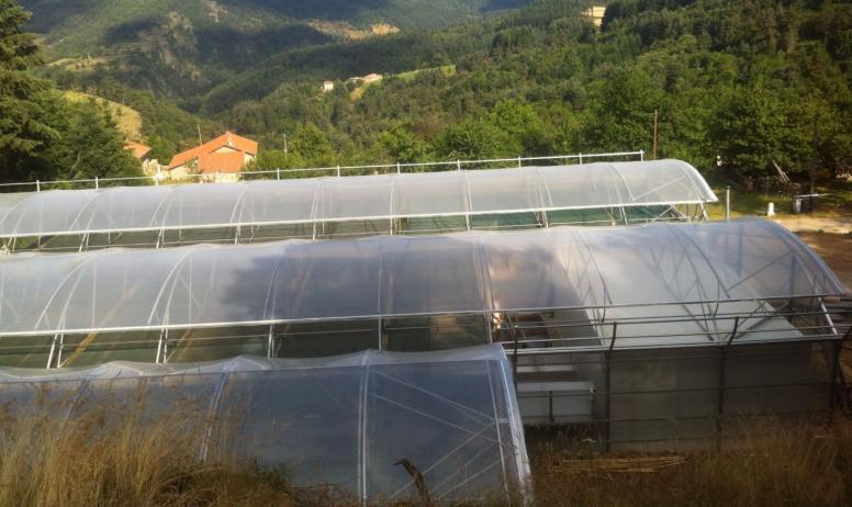 Spiruline des monts d'Ardèche - Les serres