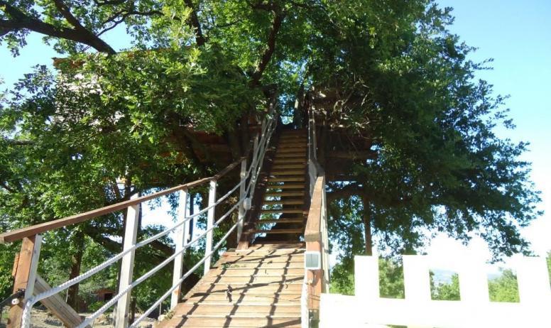 Gîtes de France - L'accès a la cabane