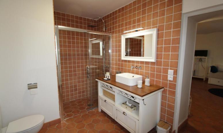 Gîtes de France - Suite Loélie , Salle d'eau trés spacieuse avec douche italienne