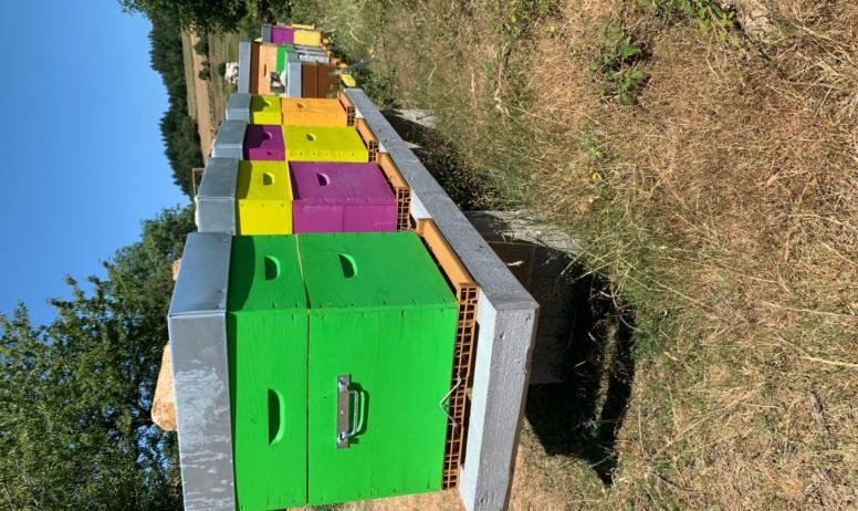 La miellerie des 3 Andreaux - Ruches colorées