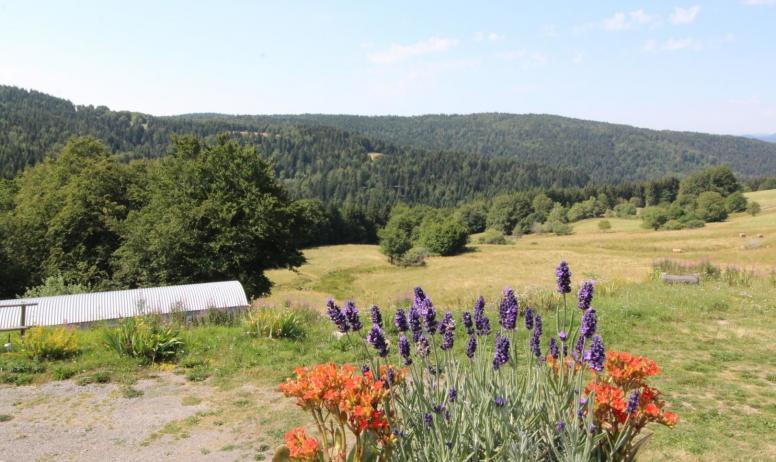 Gîtes de France - Vue de la terrasse