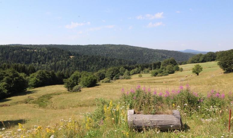 Gîtes de France - Magnifique vue et accès sur les champs