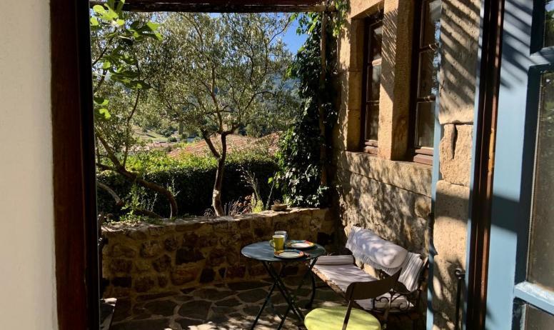 Gîtes de France - 1ere terrasse, à l'ombre du figuier, olivier et vigne