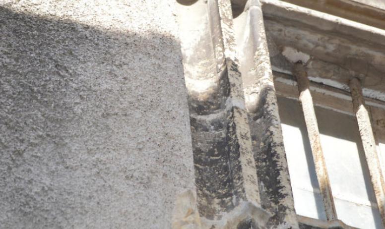 Oti du Rhône aux Gorges de l'Ardèche - Fenêtre à croisée