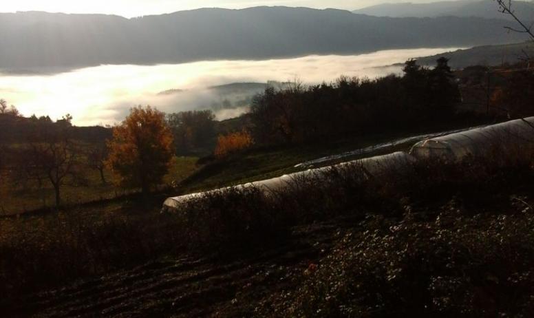 Christine Collus - La ferme du Mont