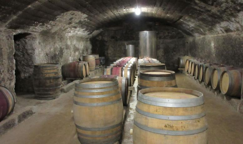 Cave Luyton Fleury - La Cave