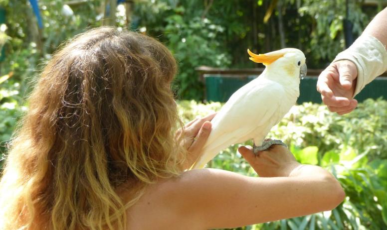 Ardèche Hermitage Tourisme - Rencontre avec les oiseaux