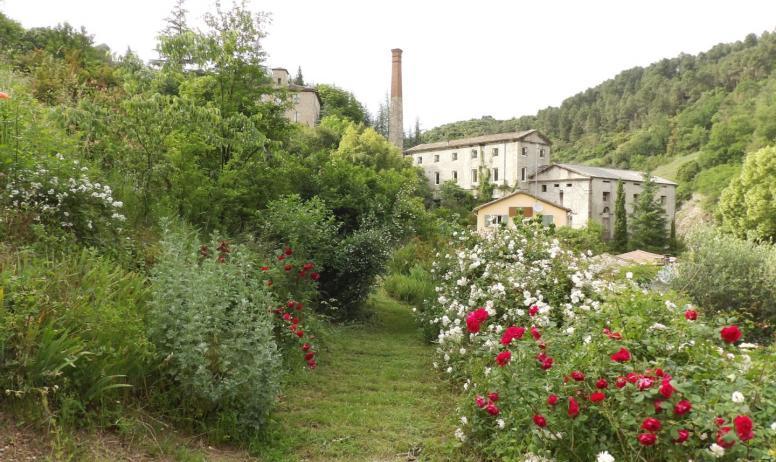 ©Cécile-Ruiz - Les Jardins du Moulinet