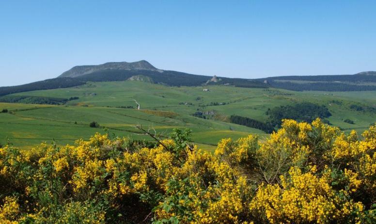 Gîtes de France - Le Mont Meyzenc(28km),1735mètres d'altitude; Magnifiques randos, paysages à couper le souffle. Nature extrême, Ardèche pittoresque